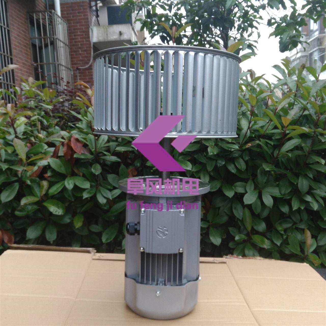 非标长轴耐高温风机
