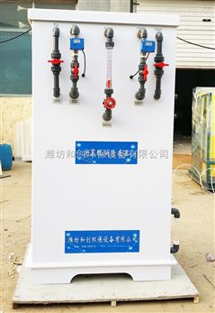 200g农村次氯酸钠发生器/电解饮水消毒设备