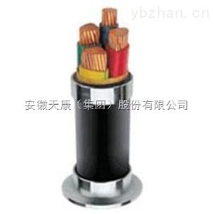 VLV33安徽天康高温线