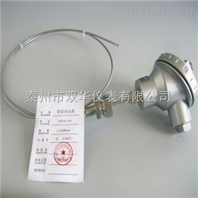 WRPK-131铠装铂铑热电偶WRPK