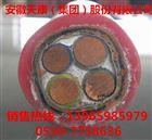 YGC YGCR硅胶绝缘硅胶护套电力电缆