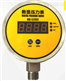 管道液压水压气压压力表压力计