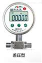 DP-100精密數字差壓表,西安自動化儀表一廠