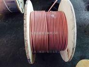 透明硅橡胶电缆JG-2000V-120