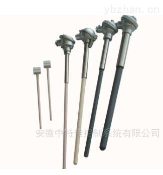 直形管接头式热电阻一体化带温度变送器