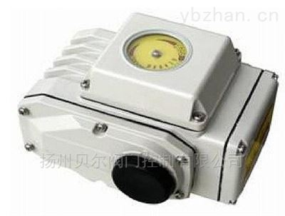 DKJ精小型角行程电动执行器