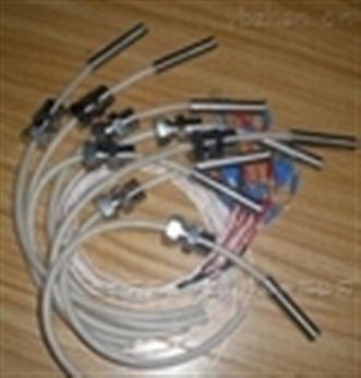 双支铠装热电偶wrnk2--395