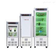 人工气候箱 RXZ-160