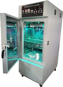 GB/T2812-2006安全帽紫外线辐照箱