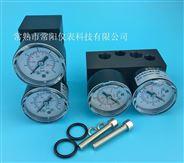 6DR4004-1M单作用压力表组件