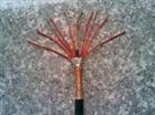 IA-DJYPVP聚氯乙烯绝缘屏蔽电线