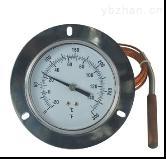 WTYY-1033-工業溫度計