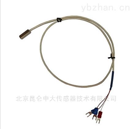 KZW/P-201-北京表面温度传感器非标定制,响应速度快