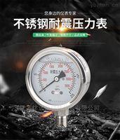 YN-60/YN-100耐震压力表