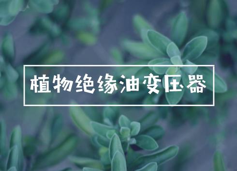 """""""植物绝缘油变压器环保性能评估""""项目通过验收"""