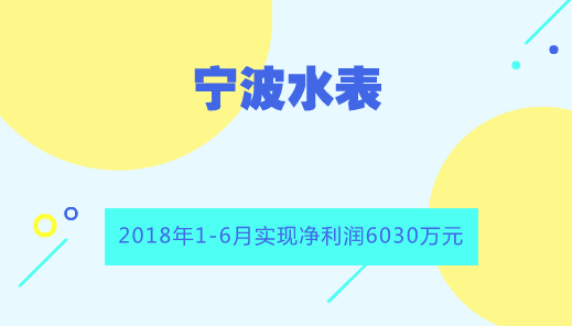 宁波水表上半年净利润6030万 同比增长14%