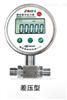 DP-100DP-100精密数字差压表,西安自动化仪表一厂