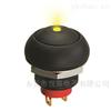 小型复位按钮开关IP68防水带灯