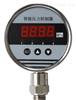 TRD1000TRD1000系列数字压力控制器